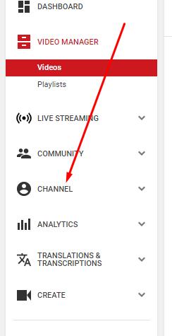 Earn, Beginner's Guide: How to Earn Money from YouTube Pakistan