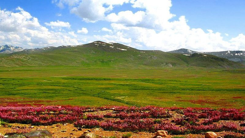 Pakistan, 5 Places to Visit in Pakistan if you are coming from Abroad