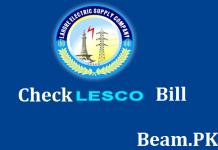 check lesco bill online