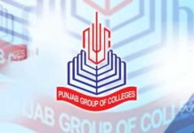 Punjab College Jobs 2018