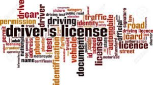 Verify Driving License Online