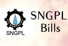 Sngpl Online Bill