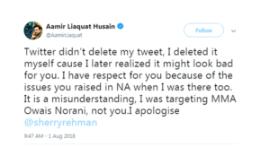 Amir Liaquat, Is Amir Liaquat Ruining Image of Naya Pakistan? Badly Criticized for Hate Tweet