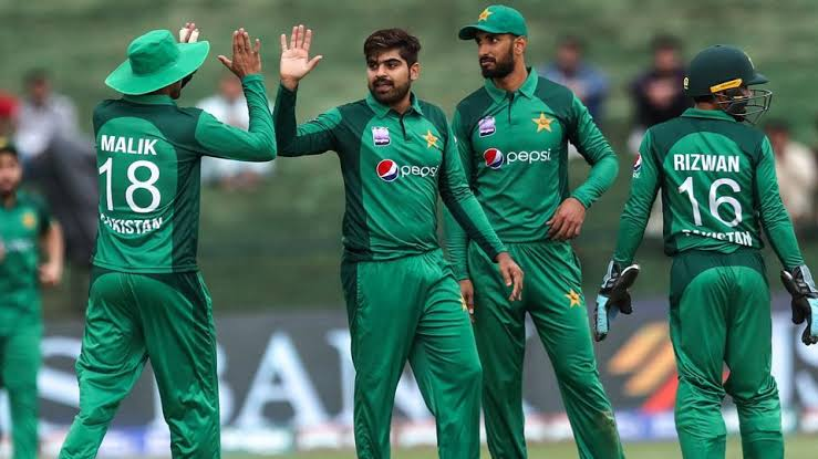 Pakistan's World Cup, Pakistan's Cricket World Cup squad 2019| Team Players