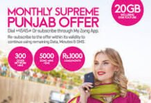 Zong new offer